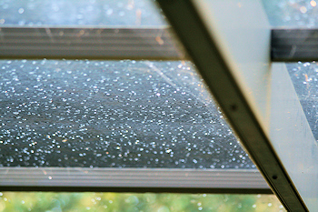 dew drops on lanai screen